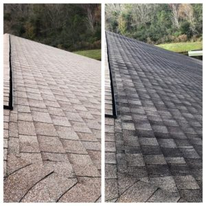 roof cleaning spring hill fl